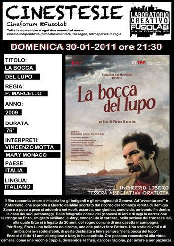 20110130_boccalupo.jpg