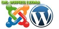 CMS - Wordpress