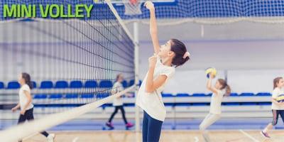 Mini Volley