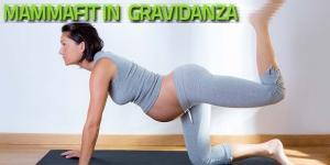 MammaGym Gravidanza Workout